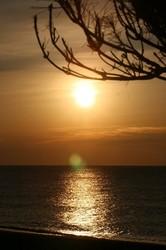 1月鮫島海岸の朝日 123.jpg