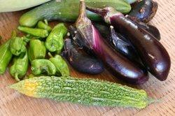 8月野菜の収穫 011.jpg