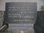 5月花長崎 045.jpg