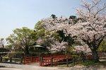 掛川城、花鳥園 011.jpg