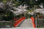 掛川城、花鳥園 012.jpg