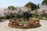 掛川城、花鳥園 046.jpg