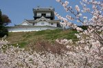 掛川城、花鳥園 082.jpg