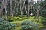 京都 486.jpg