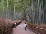 京都嵐山  017.jpg