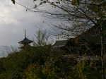 京都旅行〜金閣寺〜嵐山〜龍成寺〜清水寺 137.jpg