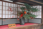 京都旅行〜大覚寺〜嵐山〜竹林〜銀閣寺〜 077.jpg