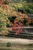 京都旅行〜大覚寺〜嵐山〜竹林〜銀閣寺〜 183.jpg