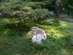 京都旅行〜大覚寺〜嵐山〜竹林〜銀閣寺〜2 031.jpg