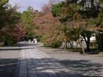 京都旅行〜大覚寺〜嵐山〜竹林〜銀閣寺〜2 143.jpg