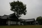 京都旅行〜大覚寺〜嵐山〜竹林〜銀閣寺〜2 367.jpg