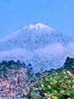 立〜富士山3.jpg