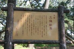三保の松原 029.JPG