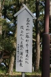 三保の松原 044.JPG