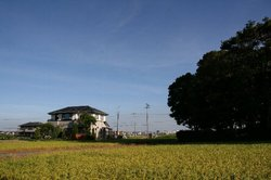 今朝の空.jpg