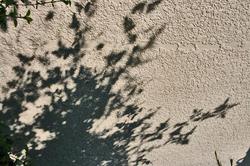壁か影.jpg