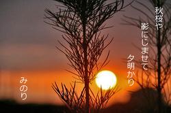 夕日〜.jpg