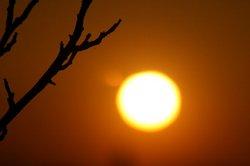 大きな夕日.jpg