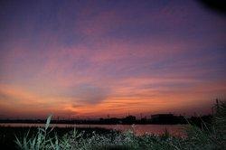 大池の朝焼け.jpg