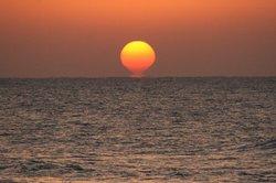 太陽♪.jpg