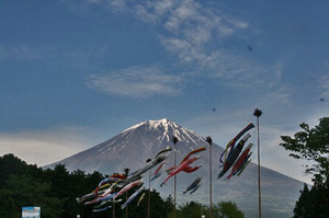 富士と薔薇-001~~.jpg