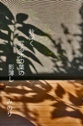 影の影.jpg