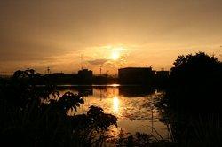 日の出に雲.jpg