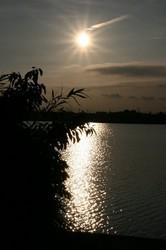 水辺と夕日.jpg