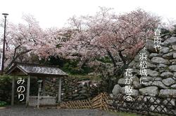 浜松城 石垣に俳句.jpg