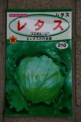 菜園 003.jpg