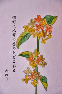 金木犀-095.jpg