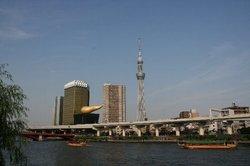 隅田川とツリー.jpg