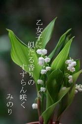 〜〜白い.jpg