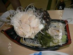 yakougai〜2.JPG