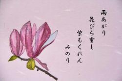 ~~コブシ-045.jpg