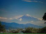 2008、お盆〜海〜パッチワーク絵2 438.jpg