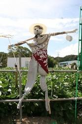 9月 案山子と野菜 008.jpg