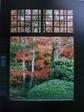 京都 320.jpg