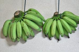 バナナ-010.jpg