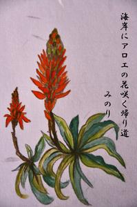 アロエの花-008~~.jpg