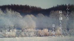 兄の写真 〜2.JPG