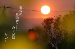 色のグラデーション〜2.JPG