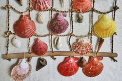 貝殻のタぺ-024.jpg