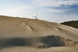 風車 風紋.jpg